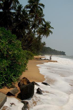 Kannur Beach House: Paradise