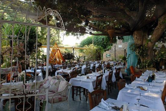 Romios Restaurant: wonderful