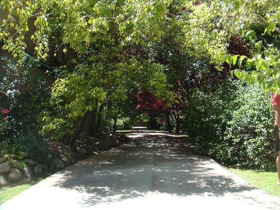كازا جليبينياس: driveway