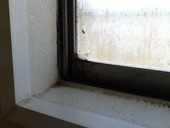 Economy Inn Gallup: the filthy shower window. It looks much worse when it's not back lit by sunlight.