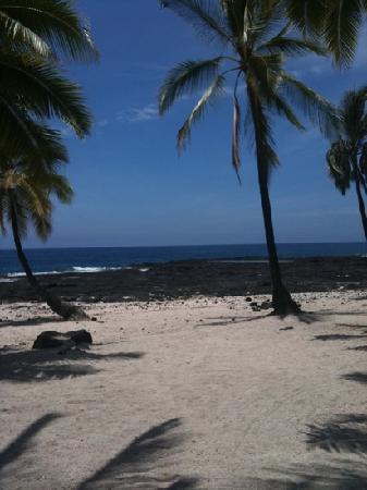Holualoa Inn: My Favorite Spot!