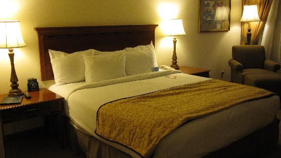 Hilton Woodland Hills/Los Angeles : Room 835