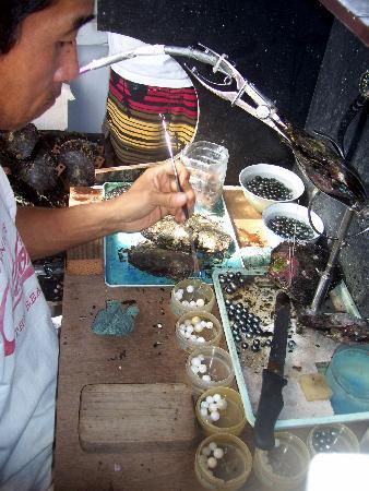 Tahaa, Polinesia Francesa: Tahitian pearl process