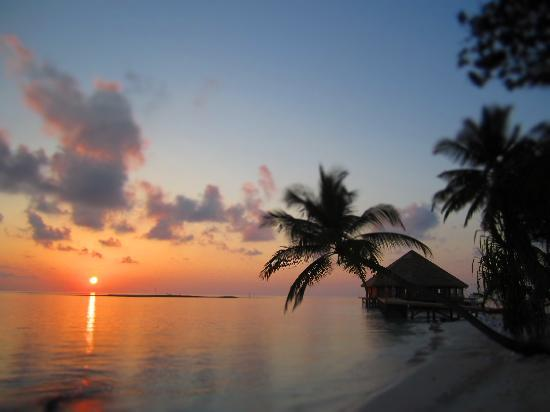 Vilamendhoo Island Resort & Spa: sunrise