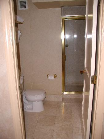 The Manhattan Club: view of guest bathroom with shower