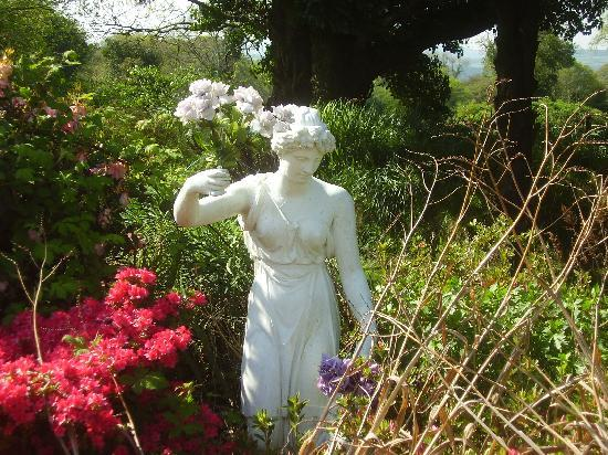 Moorland Garden Hotel: One of the residents!
