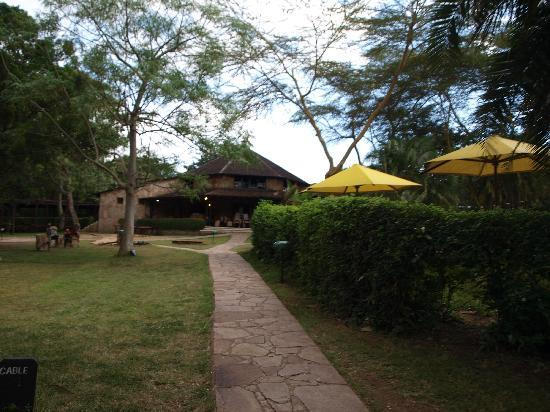 Sarova Mara Game Camp: the walk to the main building from our tent