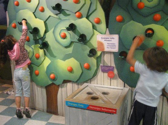Miami Children's Museum: orange trees