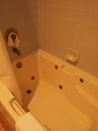 Depoe Bay Inn: soaking tub in bathroom