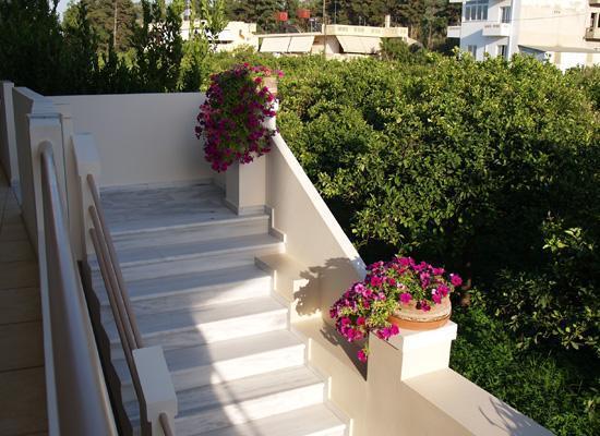 Toxo Hotel & Apartments: Toxo Hotel