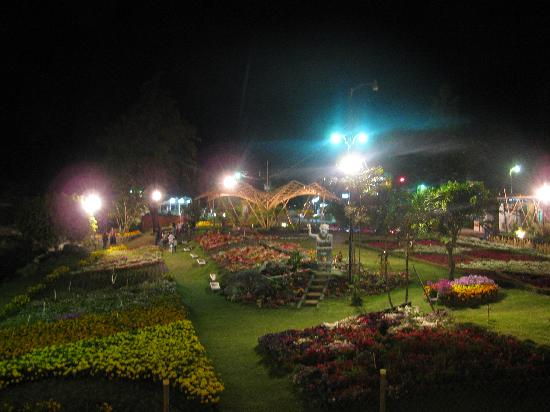 El Oasis Hotel & Restaurant: Fairgrounds at night