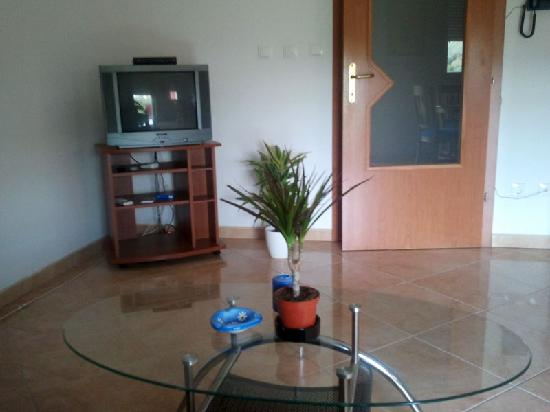 Apartments Villa Galija: Living room