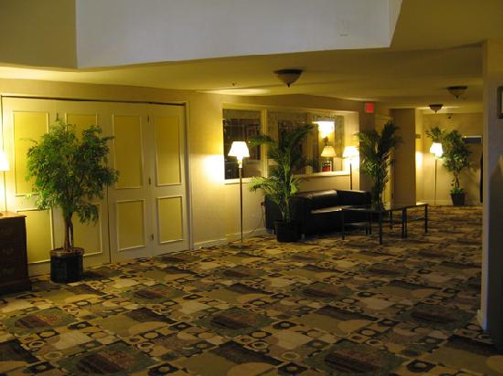 Bedford Plaza Hotel - Boston: Lobby