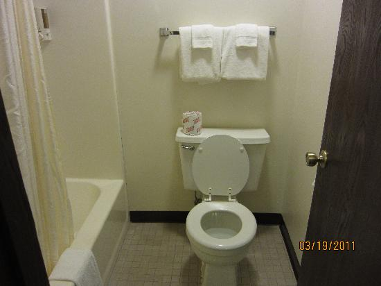 Frankenmuth Motel : Bathroom 1