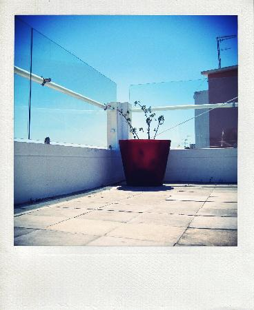 The House : terrace and sky