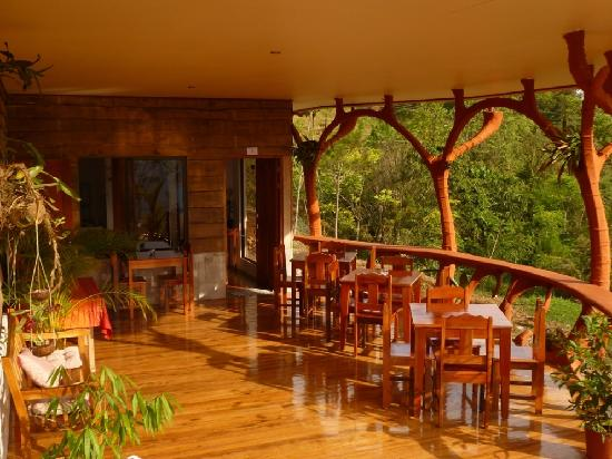 Casa Botania Bed & Breakfast 사진