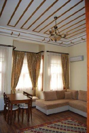 Blue Eye Suites : living room