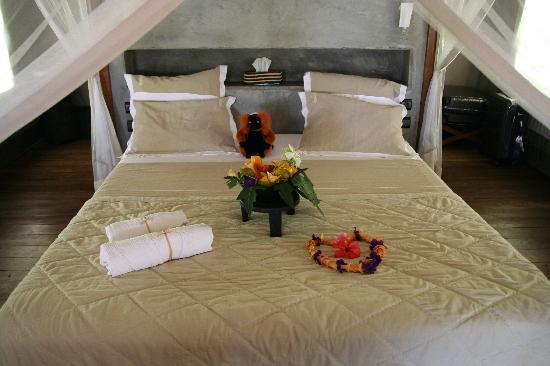 Eden Lodge : lodge