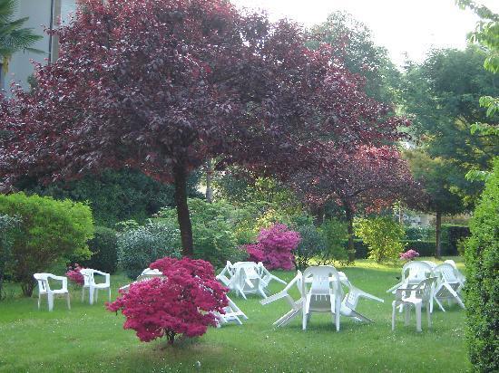 Mon Toc: le jardin