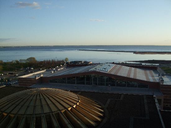 ปาร์คอินน์ พรีบัลติย์สกายา เซนต์ปีเตอร์สเบิร์ก: view from our room of the gulf of Finland.