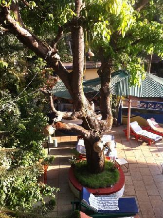 Lui Beach Resort: view from room 101