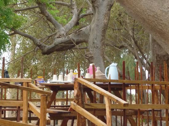 Djidjack : petit déjeuner dans les arbres