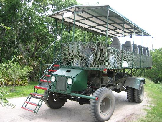 the swamp buggy