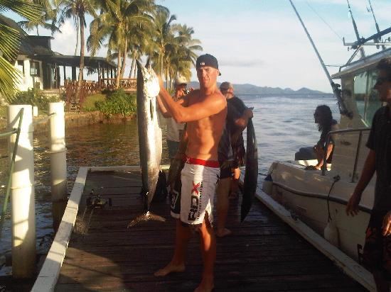 Freedive Fiji Charters - Day Trips: Wahoo