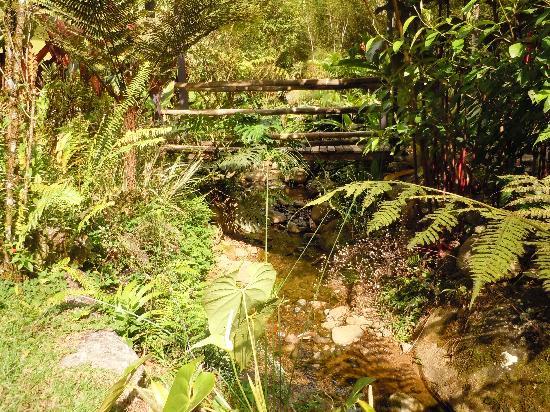 Monte Azul: Bridge to My Casita