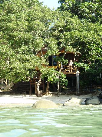 Viking Natures Resort: view of the tree hut from in the water