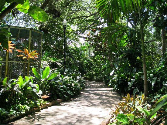 Winding Along Picture Of Sunken Gardens St Petersburg Tripadvisor