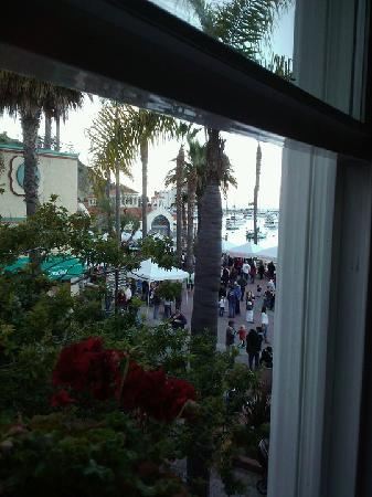 Snug Harbor Inn: View of the Avalon Bay from Santa Cruz room