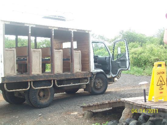"""Floreana Lava Lodge: """"Chiva"""", el medio de transporte de Floreana Red Mangrove."""