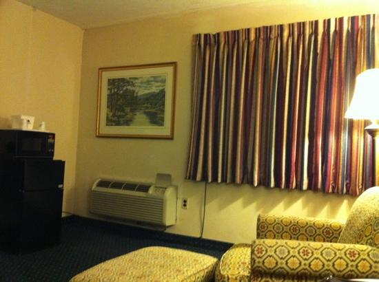 Americas Best Value Inn: single room