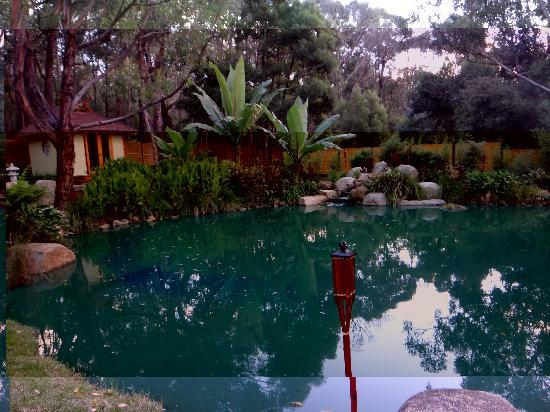 Japanese Mountain Retreat Mineral Springs & Spa: Outside