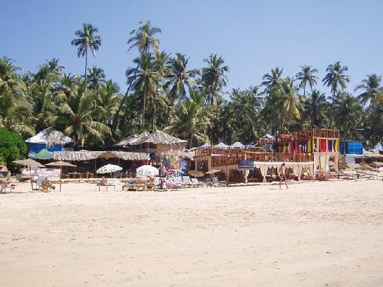 Palolem Beach : The beach