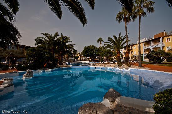 Alcudia Garden Aparthotel : Pool