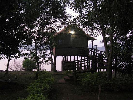 Pooja Farms : room-night view