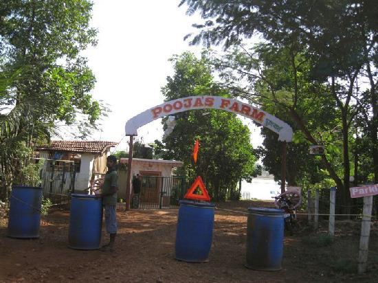 Kolad, Inde : pooafarms