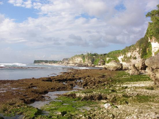 Bingin Garden: Bingin beach side
