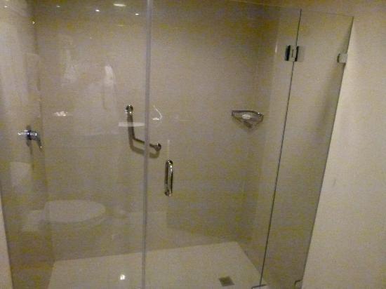 LIDOTEL Hotel Boutique Barquisimeto: Ducha