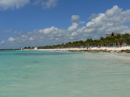 Barcelo Maya Palace Beach Gorgeous
