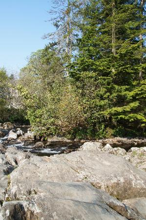Afon View Guest House: Betws-y-Coed