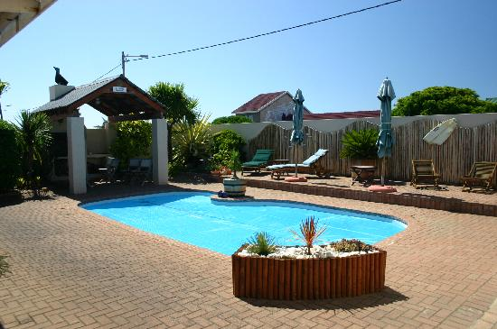 Avenues Guesthouse: Pool