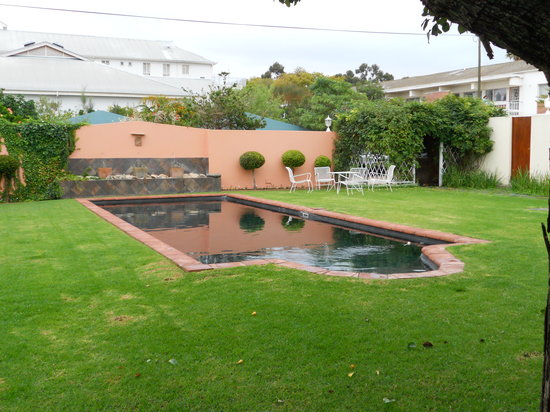 The Habit Guesthouse: The back garden and pool