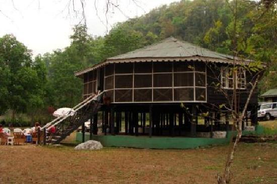Glenburn Tea Estate: The campsite at Rungeet River
