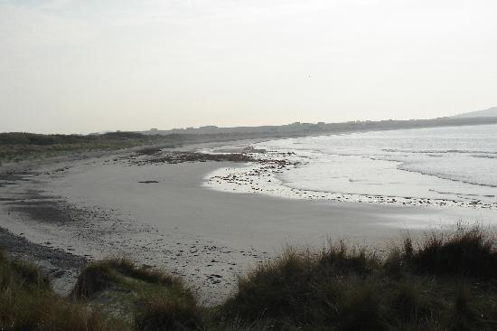 Isle of Tiree, UK: Just one picture of the lovely beach