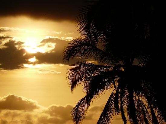 Tango Mar Beachfront Boutique Hotel & Villas: sunset