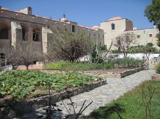 Bed & Breakfast at the Oaxaca Learning Center: Botanical Gardens behind the Santa Domingo Church