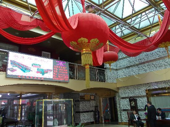 Botou, Κίνα: Lobby